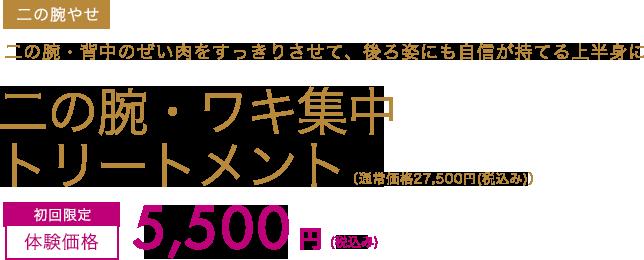 二の腕・ワキ集中トリートメント 初回限定体験価格5,500円(税込み)